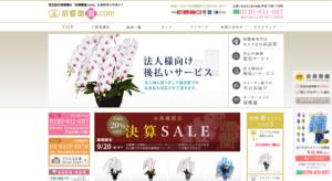 胡蝶蘭.com