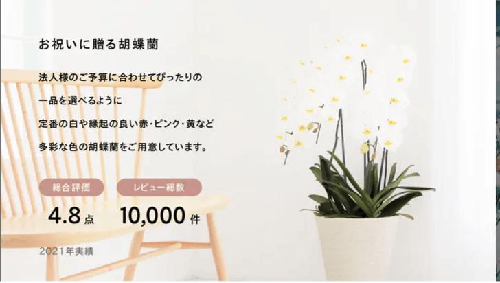 Hitohanaの2021年レビュー実績